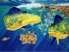 Guy Harvey  fish-4