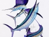Guy Harvey  fish-5